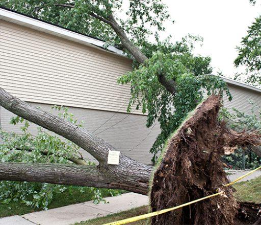 storm-damage-pic-2-1